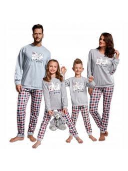 Пижама мужская Cornette 172/104 My family